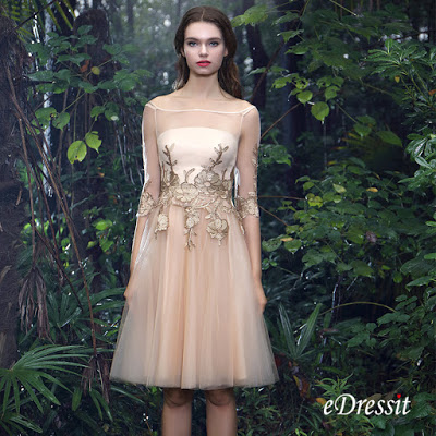 http://www.edressit.com/edressit-champagne-half-sleeves-cocktail-dress-with-lace-appliques-04170824-_p4905.html