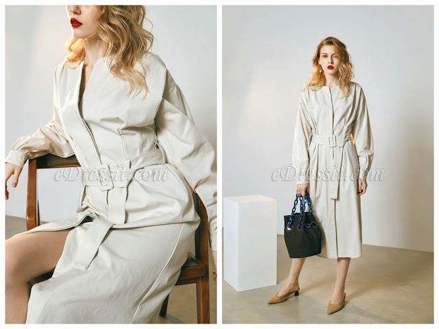 Chic Long Sleeves Day Wear Shirt Dress